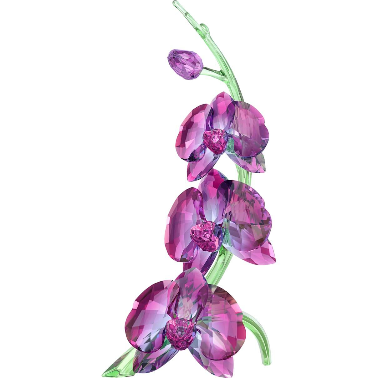 Swarovski Orchids