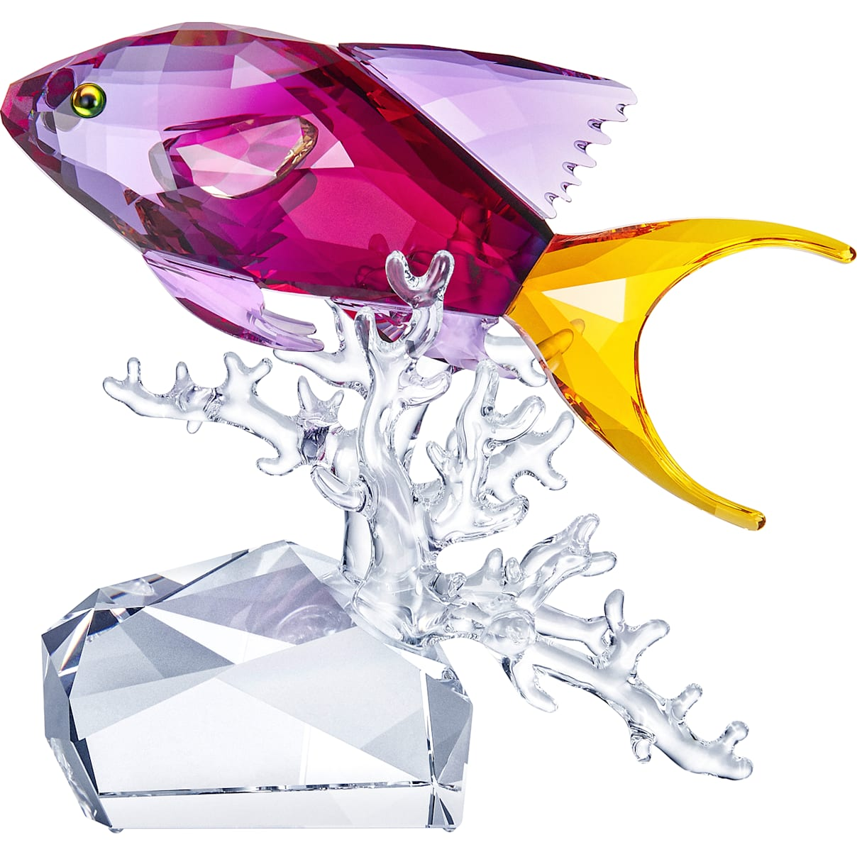 Swarovski Anthias Fish