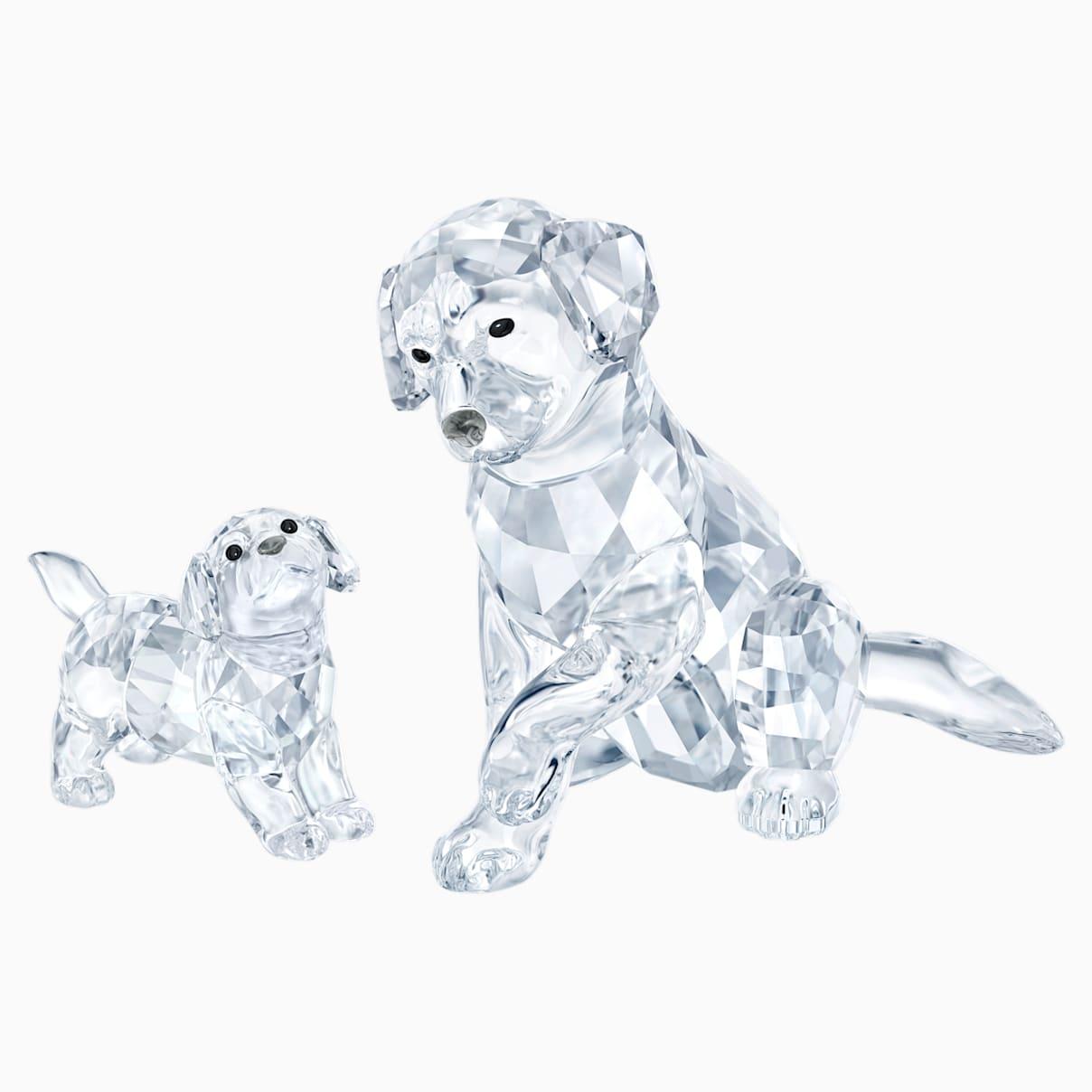 Set Famiglia di Labrador (online)