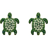 Mustique Sea Life-steekoorbellen schildpad, Groen, Goudkleurige toplaag - Swarovski, 5533757