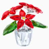 Poinsettia pequeña - Swarovski, 5291023
