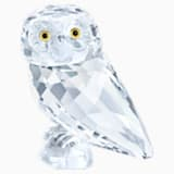 小猫头鹰 - Swarovski, 5302522