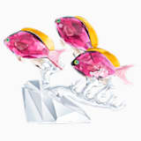 Trio de poissons Anthias - Swarovski, 5428652