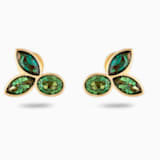 Boucles d'oreilles clous Bamboo, vert, métal doré - Swarovski, 5535883