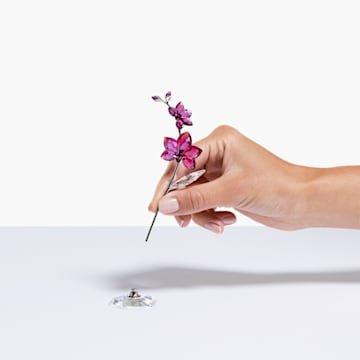 Rêves Fleuris – Orchidée, grand modèle - Swarovski, 5490755