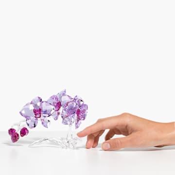 Orchidej - Swarovski, 5520373