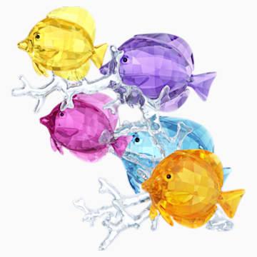 Familia de peces arcoíris - Swarovski, 5223195