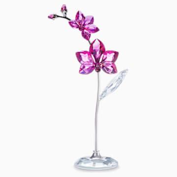 Virágos álmok – Orchidea, nagy - Swarovski, 5490755