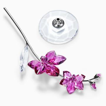 Sueños florales – Orquídea, grande - Swarovski, 5490755