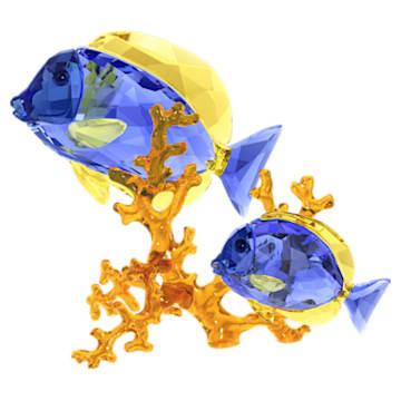 刺尾鱼 - Swarovski, 5223194