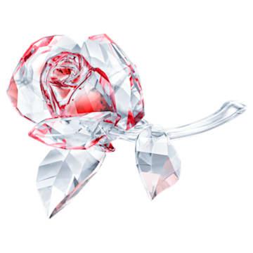 Rosa a florescer, vermelha - Swarovski, 5428561