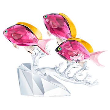 Trio de poissons Anthias - Swarovski, 5428652