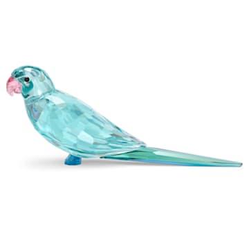 Jungle Beats-藍色小鸚鵡Paco - Swarovski, 5574519
