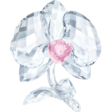 Orquídea - Swarovski, 5301562