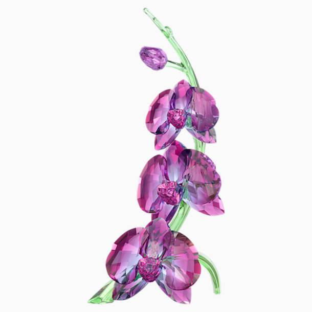 Orchids - Swarovski, 5243561