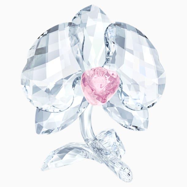 Orchidée - Swarovski, 5301562