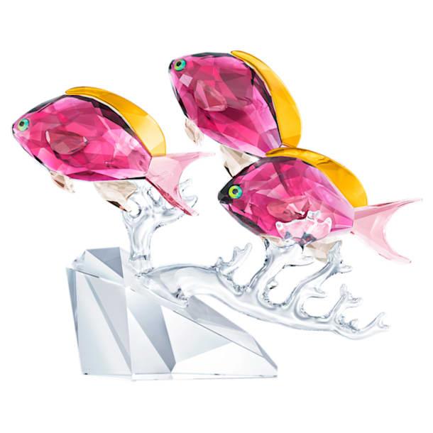 Trojice ryb Anthias - Swarovski, 5428652
