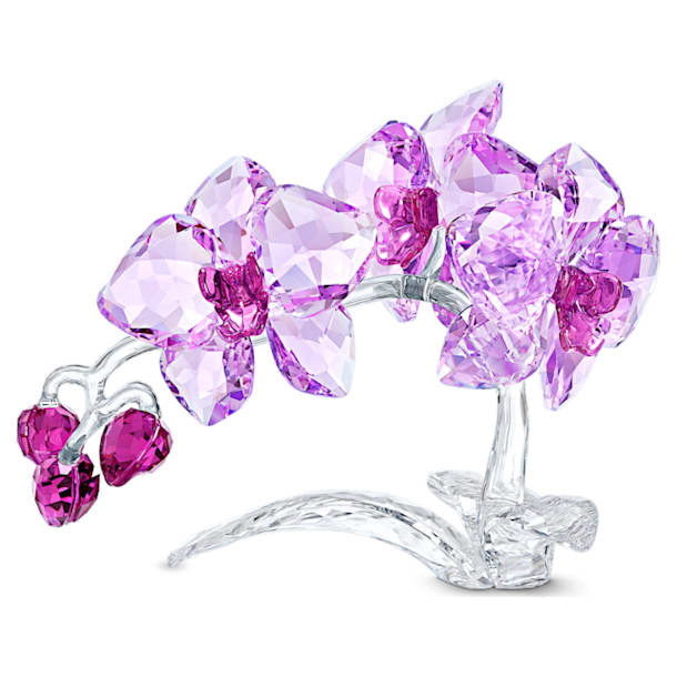 Crystal Flowers Orchid - Swarovski, 5520373