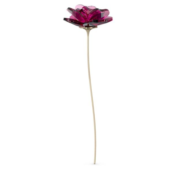 Garden Tales Rose - Swarovski, 5557800